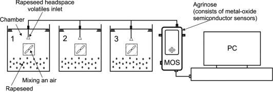 Application Of Electronic Nose With Mos Sensors To Prediction Of
