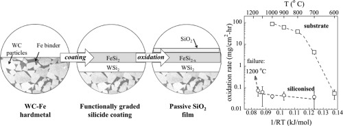 Oxidation resistant tungsten carbide hardmetals sciencedirect graphical abstract ccuart Images