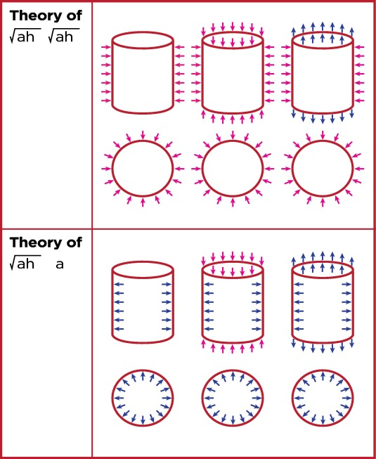 fragments of the theory of anisotropic shells