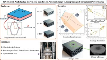 3D printed architected polymeric sandwich panels: Energy ...