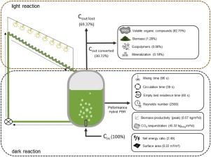 A New Hybrid Photobioreactor Design For Microalgae Culture Sciencedirect