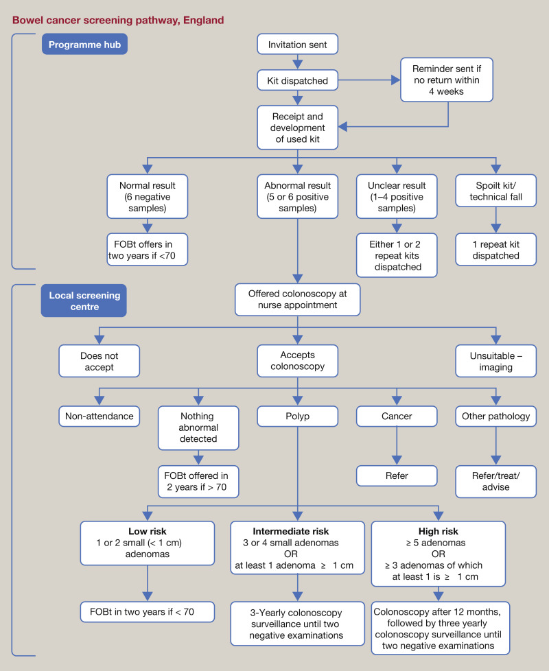 Bowel Cancer Screening Sciencedirect