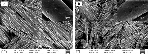 Robust UV-cured superhydrophobic cotton fabric surfaces with self