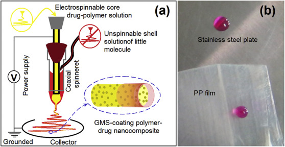 Electrospun lipid-coated medicated nanocomposites for an improved