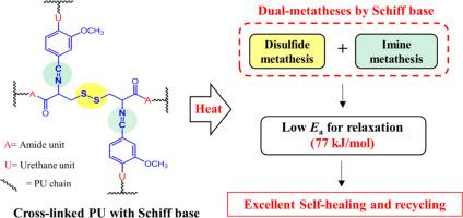 Self-healing of cross-linked PU via dual-dynamic covalent bonds of a