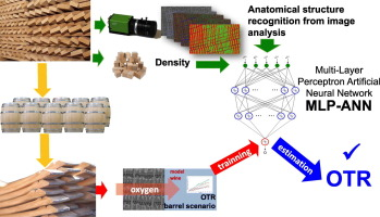 Application of image analysis and artificial neural networks
