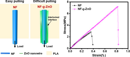 Interfacial reinforcement mechanism in poly(lactic acid)/natural fiber  biocomposites featuring ZnO nanowires at the interface - ScienceDirect