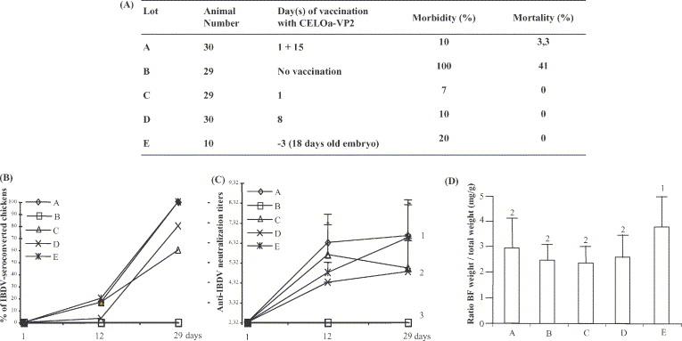 Avian adenovirus CELO recombinants expressing VP2 of