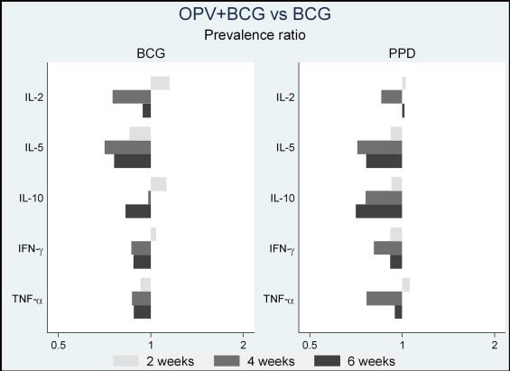 The immunological effects of oral polio vaccine provided with BCG