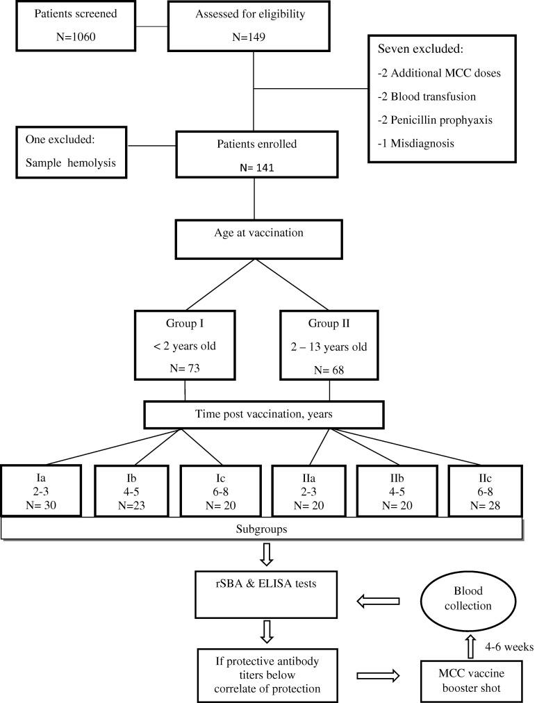 Antibody persistence after serogroup C meningococcal