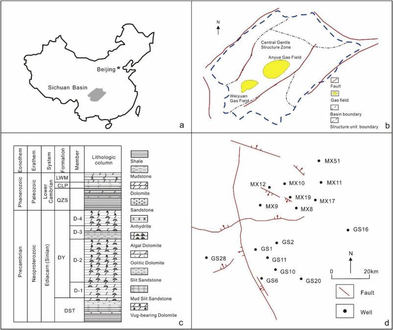 Biomarker signatures of the Ediacaran–Early Cambrian origin