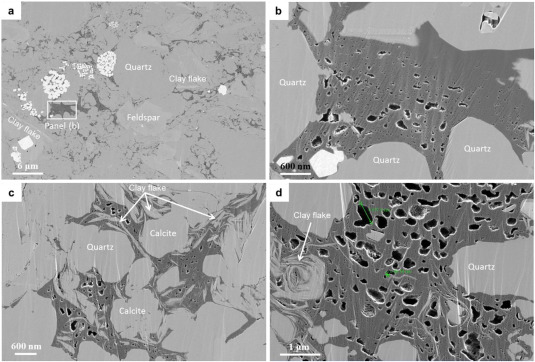 Petrophysical characteristics of shales with different lithofacies