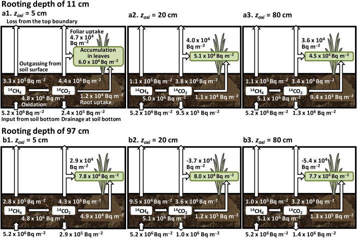 Protector plantas 3,2x10 Mt