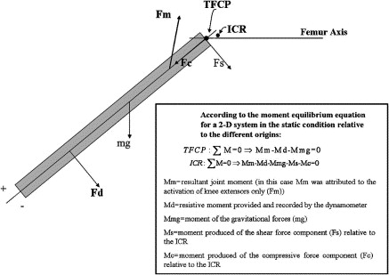 Human patellar tendon moment arm length measurement considerations free body diagram of the tibiofemoral forces during knee joint loading isokinetic knee extension using the tfcp the moment ms and mc of the unknown joint ccuart Images