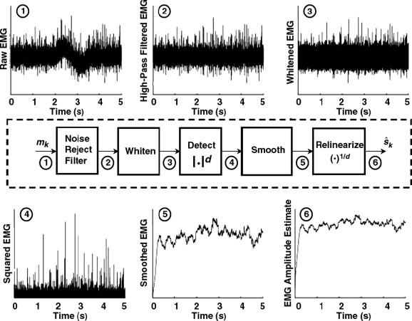 Surface Emg Based Muscle Fatigue Evaluation In Biomechanics Sciencedirect