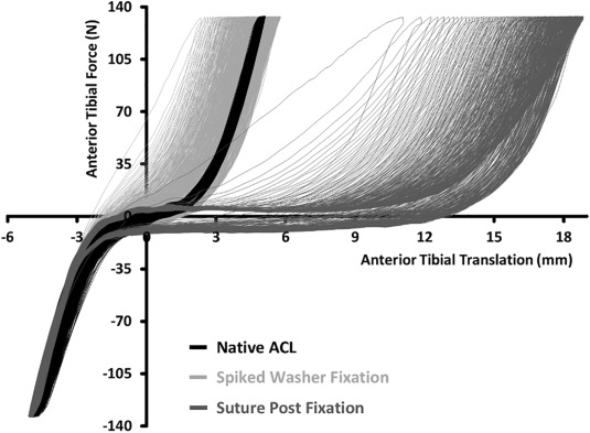 Cyclic Testing Of Tibialis Tendon Allografts For Anterior