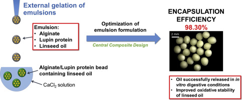 Highly efficient encapsulation of linseed oil into alginate