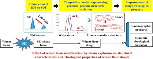 Effect of wheat bran modification by steam explosion on structural
