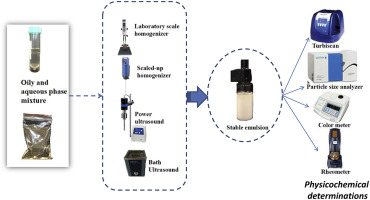 In-pack sonication technique for edible emulsions