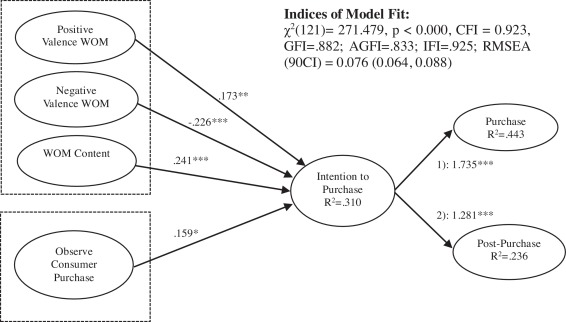 Social interaction-based consumer decision-making model in