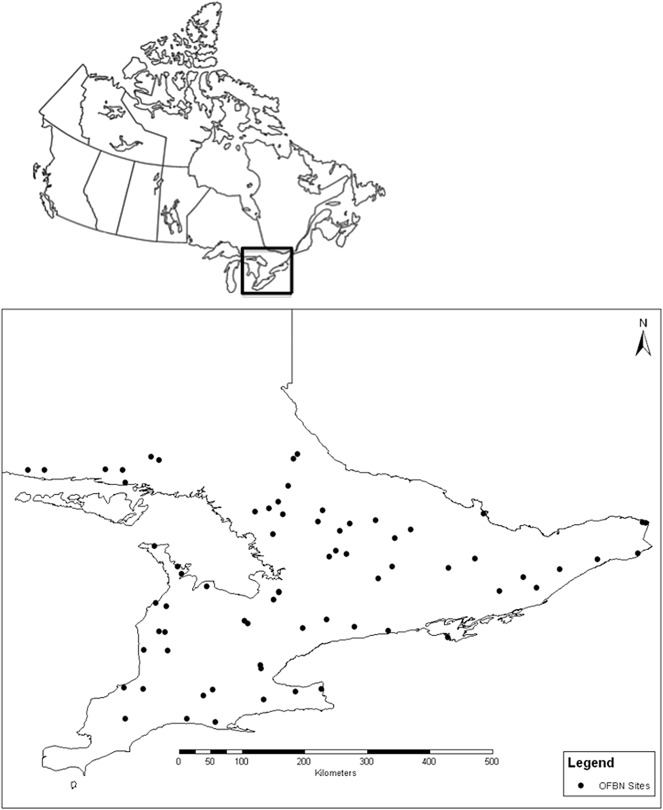 Impacts Of Nitrogen Deposition On Herbaceous Ground Flora And