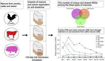 Temporal succession of soil antibiotic resistance genes