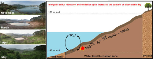 Inorganic sulfur and mercury speciation in the water level