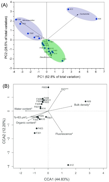 contamination by perfluoroalkyl substances and microbial community