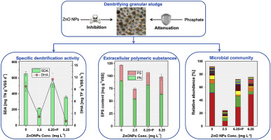 Effects of ZnO nanoparticles on high-rate denitrifying