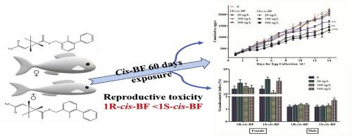 Chronic exposure to environmental levels of cis-bifenthrin