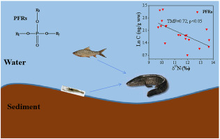 Organophosphorus Flame Retardants In A Typical Freshwater Food Web