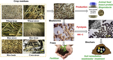 A novel clean production approach to utilize crop waste residues as