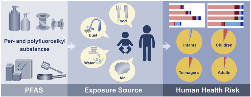 Characteristic and human exposure risk assessment of per