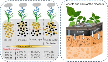 Infiltration behavior of heavy metals in runoff through soil