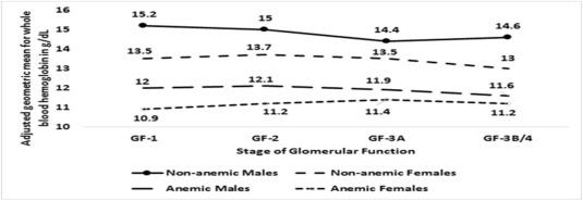 Anemie 4 5 6 Anemia: Ce este şi ce se ascunde în spatele unei anemii