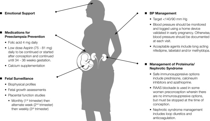 Chronic Kidney Disease And Pregnancy Sciencedirect