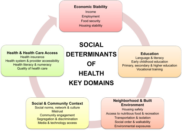 Social Determinants of Health: Addressing Unmet Needs in