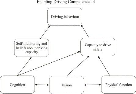 multifactorial model
