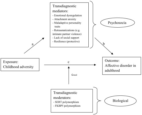 Childhood adversity as a transdiagnostic risk factor for