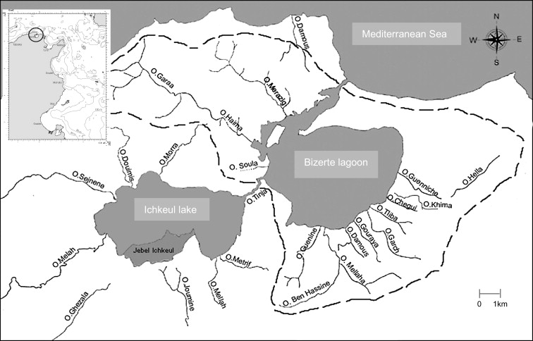 Analysis Of Hydrobiological Pattern In The Bizerte Lagoon Tunisia