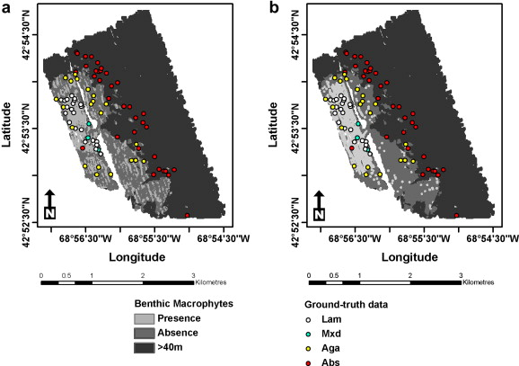 cashes ledge map detection of deep water benthic macroalgae using image based