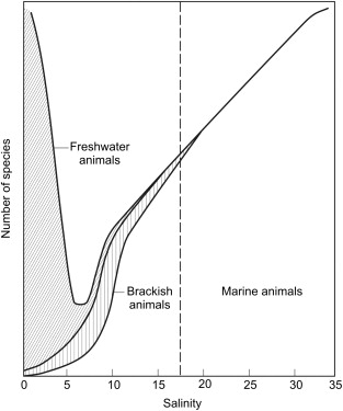 Paradigms in estuarine ecology – A review of the Remane