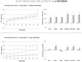 Effect of electrolysis treatment on the biomineralization capacities