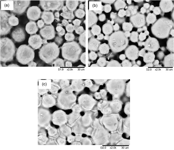 Effect of sintering on the microstructure and mechanical