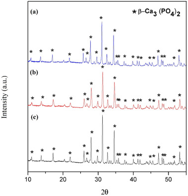 β-TCP/PVA sheets crosslinked with citric acid produced via aqueous
