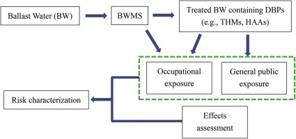 Risk assessment of human health from exposure to the