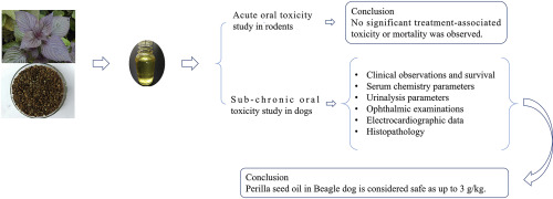 oral toxicity study of Perilla seed