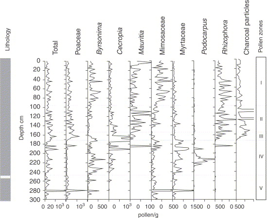 Millenial-scale climatic and vegetation changes in a northern ...