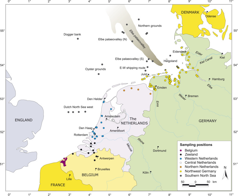 Holocene relative sealevel change isostatic subsidence and the