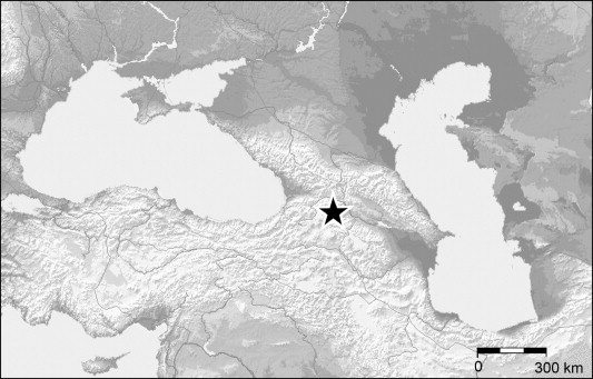 Dmanisi Georgia Map.The Cheetah Acinonyx Pardinensis Croizet Et Jobert 1828 S L At